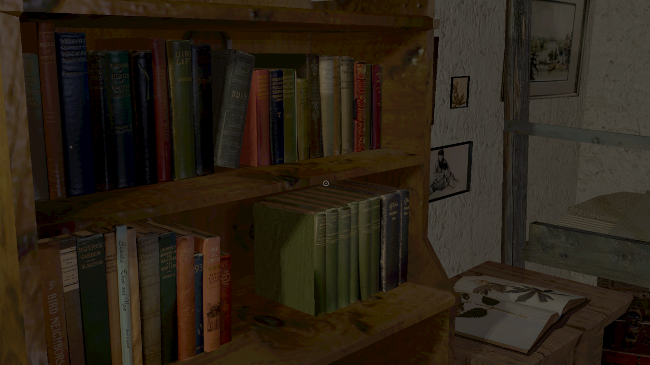 Bookshelf (detail)